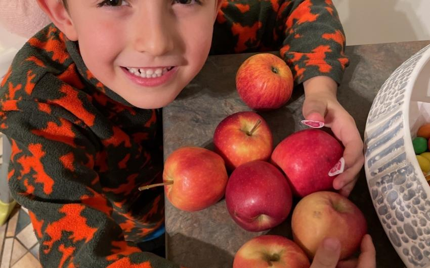 A set of 7 apples gathered by a boy in Senior Infants, room 3