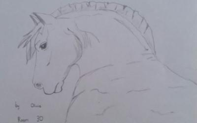 Sketch of a Horse by Olivia from room 30