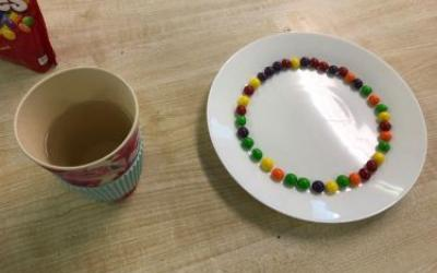 The pupils in 4th class also examined the effect of warm water on skittles and recorded their results ...