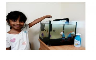 This girl from room 1 has been busy taking care of her pet fish