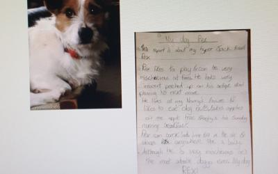 Conor from room 29 writes a report on his dog, Rex