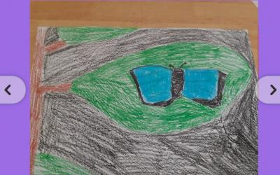 Blur Morpho Butterfly in the Rainforest by Lily Mae from room 11